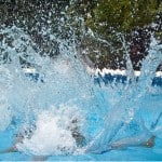 Chlorine Alternatives For Efficient Swimming Pools